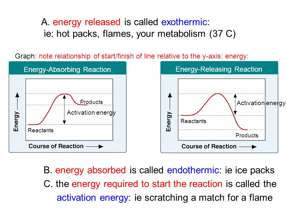 Ice Packs An Endothermic Reaction Homework Writing Service