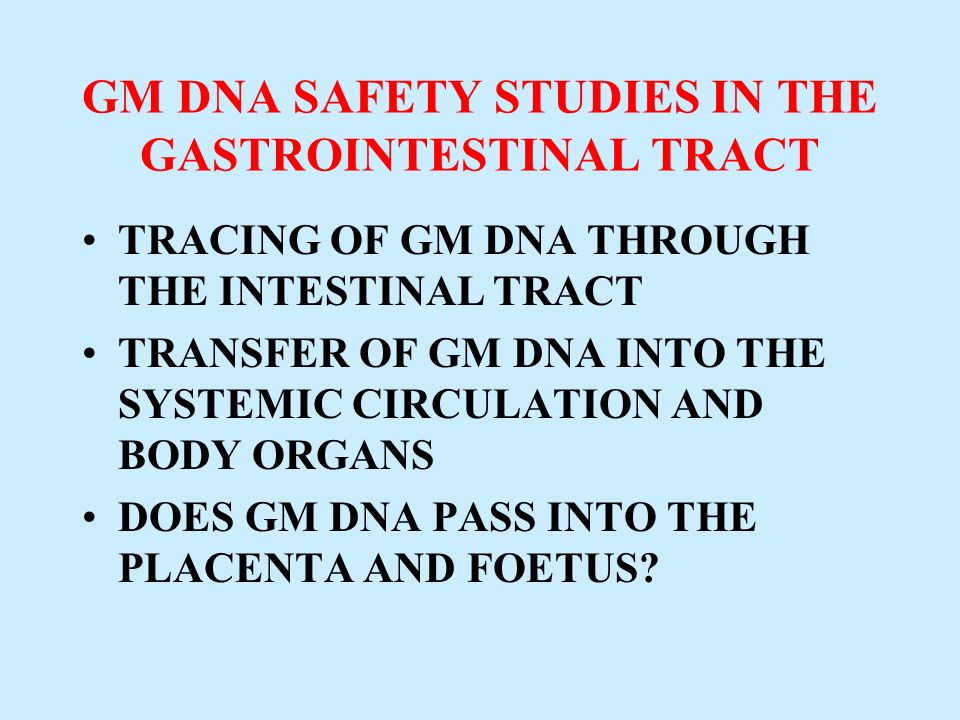 GM DNA SAFETY STUDIES IN THE GASTROINTESTINAL TRACT