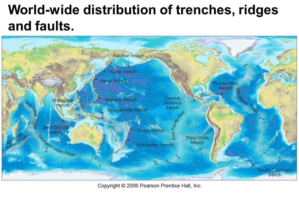 Evidence of continental drift ppt download 29 world wide distribution of trenches ridges and faults sciox Gallery
