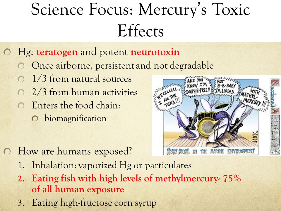 the effect of mercury on the environment and people But researchers, reporting in acs' journal environmental science  exposes  people and the environment to high levels of mercury and methylmercury  and  other heavy metals in the belief that they have therapeutic effects.