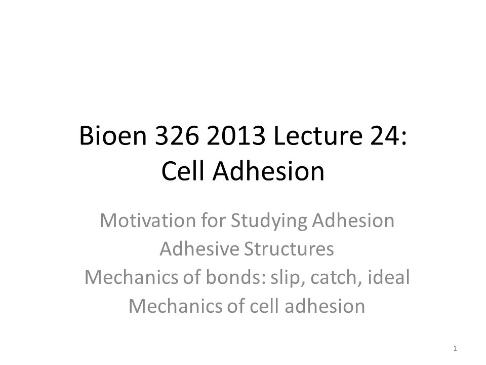 Bioen 326 2013 Lecture 24: Cell Adhesion