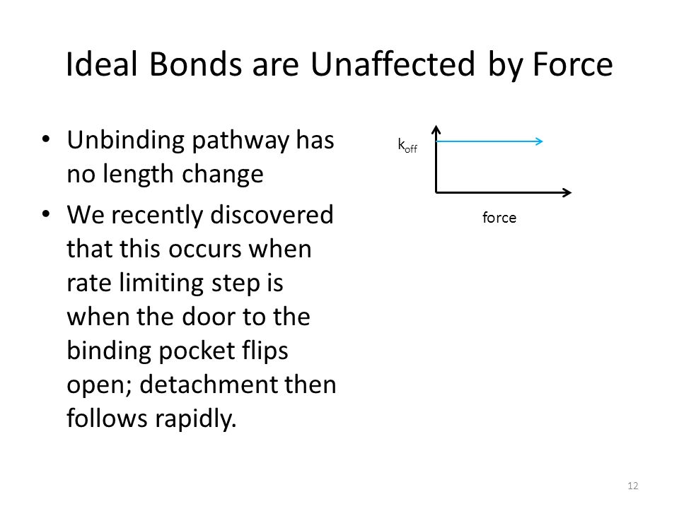 Ideal Bonds are Unaffected by Force
