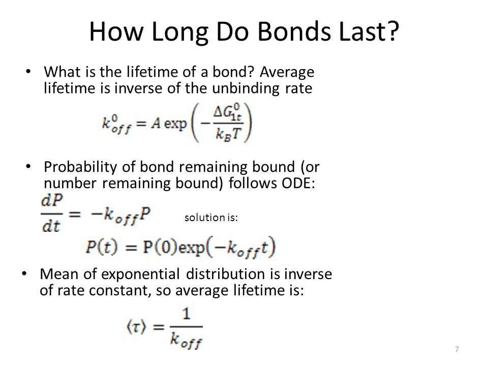 How Long Do Bonds Last What is the lifetime of a bond Average lifetime is inverse of the unbinding rate.