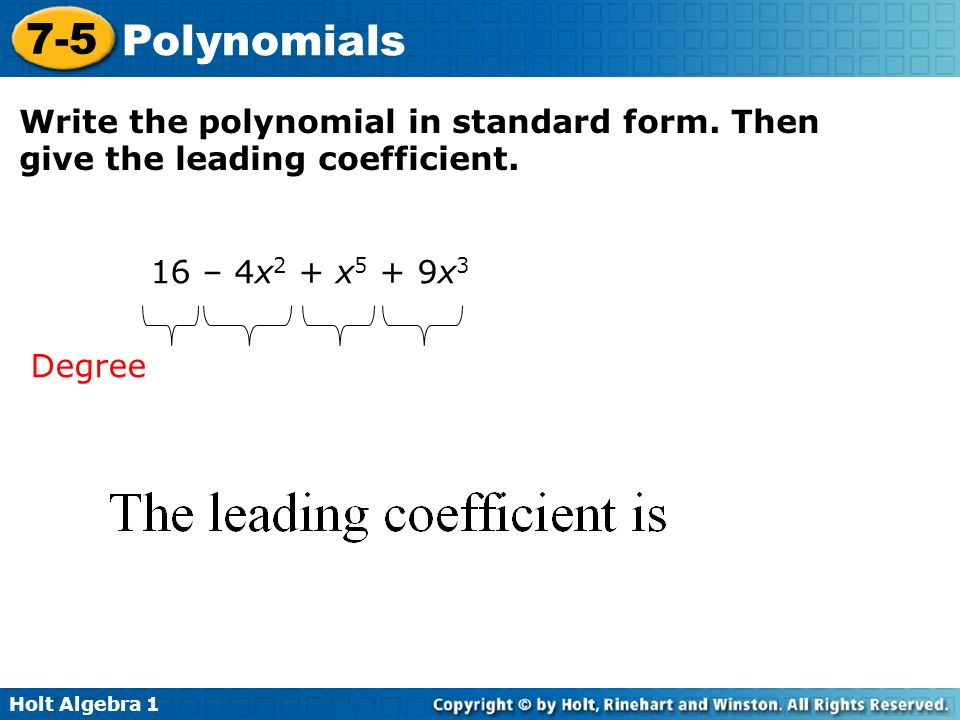 Write Polynomial In Standard Form Essay Academic Writing Service