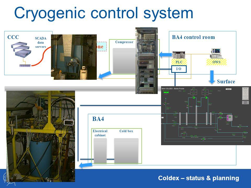 Cryogenic control system