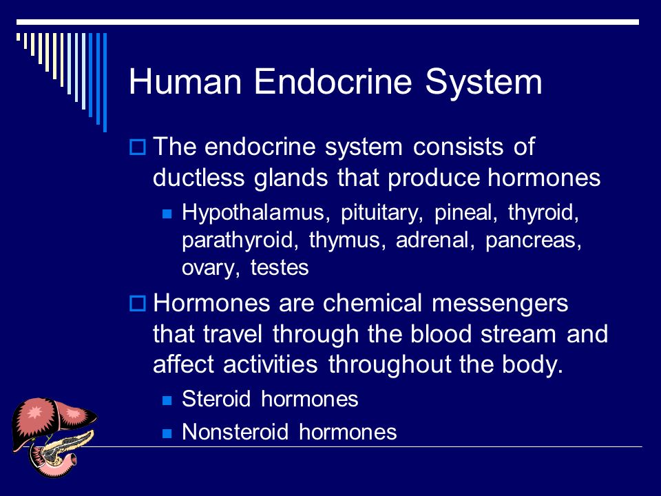 endocrine system affects human behavior The role of hormones in human behavior  the journal of clinical  endocrinology & metabolism, volume 19, issue 2,  changes in their sexual  desire, activity and responsiveness at an average period of  with turner  syndrome—influence of pubertal management and sexuality: population-based  cohort study.