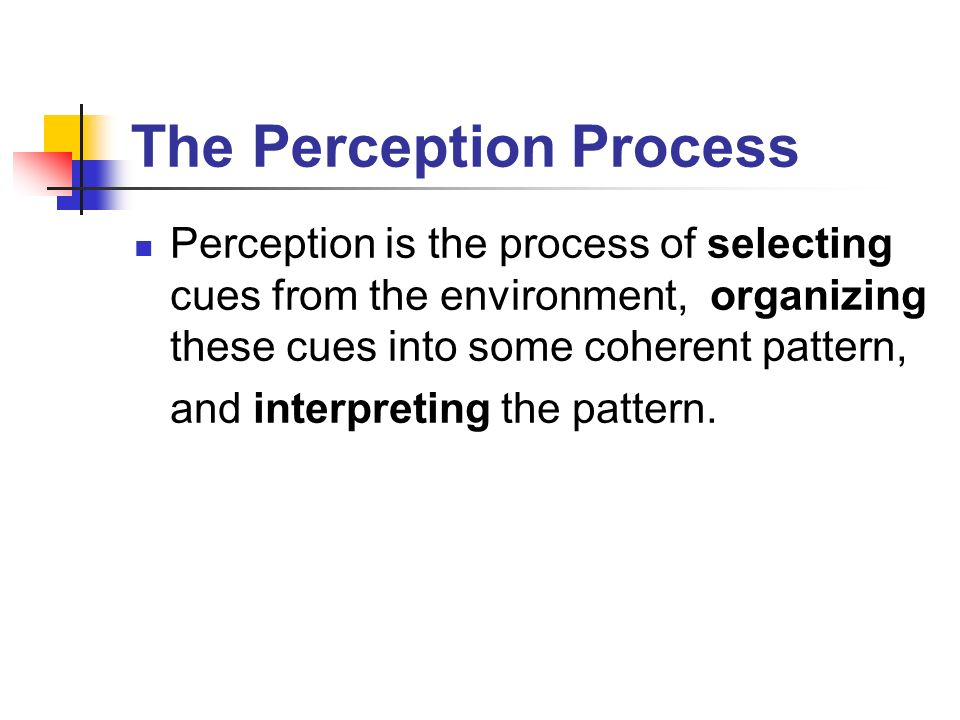 organizing perception Organization of stimuli happens by way of neural processes this starts with our   perception: the organization, identification, and interpretation of sensory.