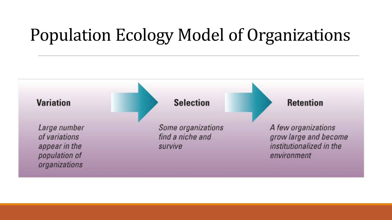 the population ecology of organizations Ment of a 15-year old population of organization studies hannan and freeman  co-authored the article 'population ecology of organizations' in the 1977 issue.