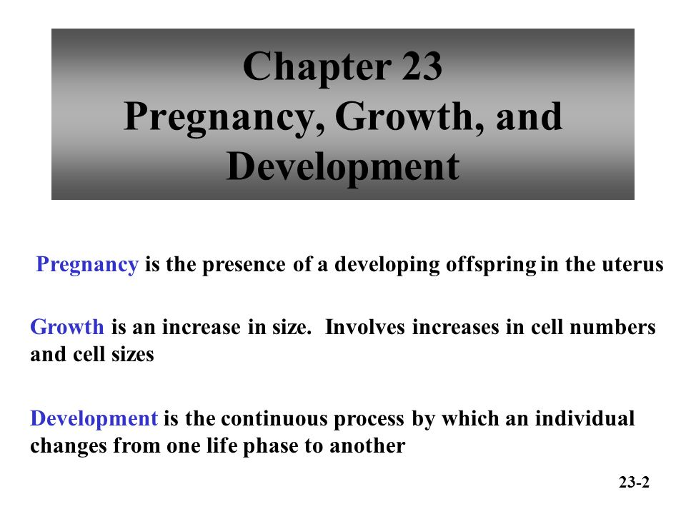Chapter 23 Pregnancy, Growth, and Development - ppt video online ...