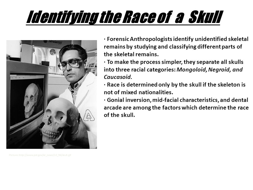 mongoloid race information
