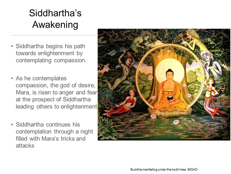 Siddhartha's Awakening