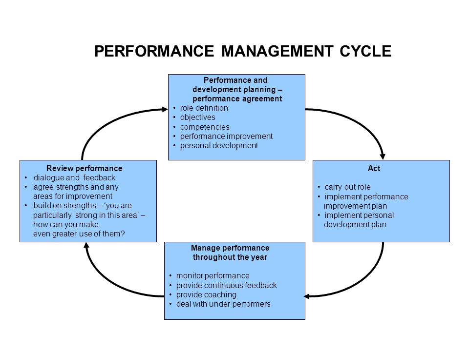 PERFORMANCE MANAGEMENT CYCLE  Performance Improvement Plan Definition