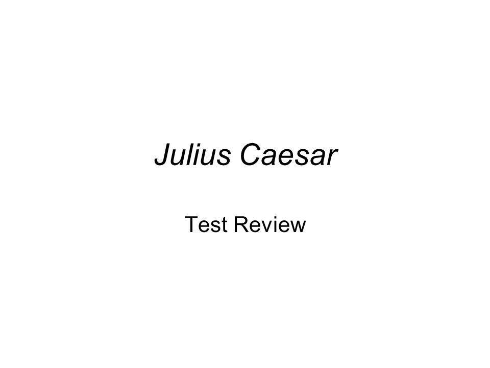 Julius caesar theme essay