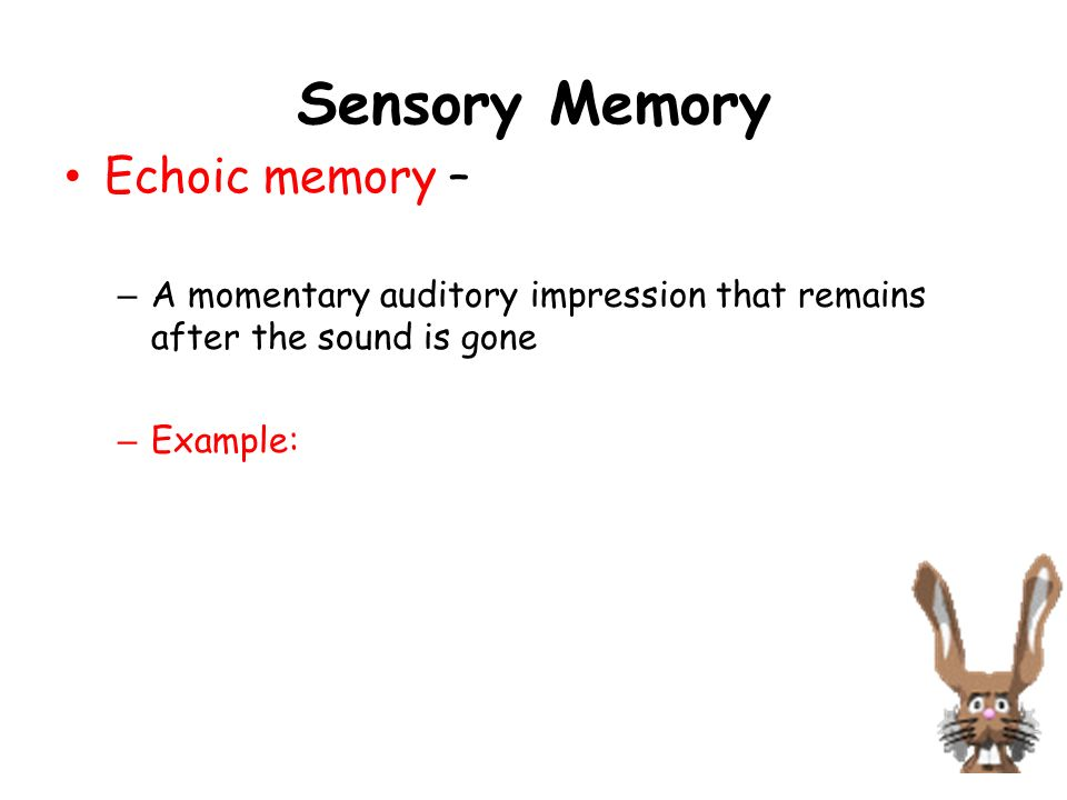iconic and echoic memory essay Essay on mobile computing and social networks analysis apple incorpotation: electronics answers - what s the difference between iconic and echoic memory.