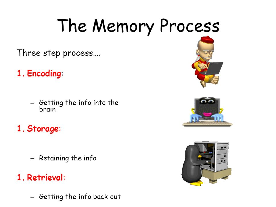 the process of encoding storing and retrieving information from our memory Retrieval – accessing or recalling stored information from memory so it can be  used  encoding is the process of getting information into memory  when  information comes into your sensory memory, it needs to be changed into a form  that.