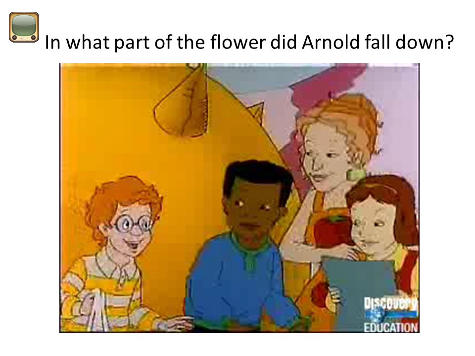 In what part of the flower did Arnold fall down