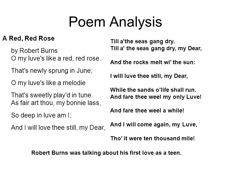 a red red rose summary and analysis