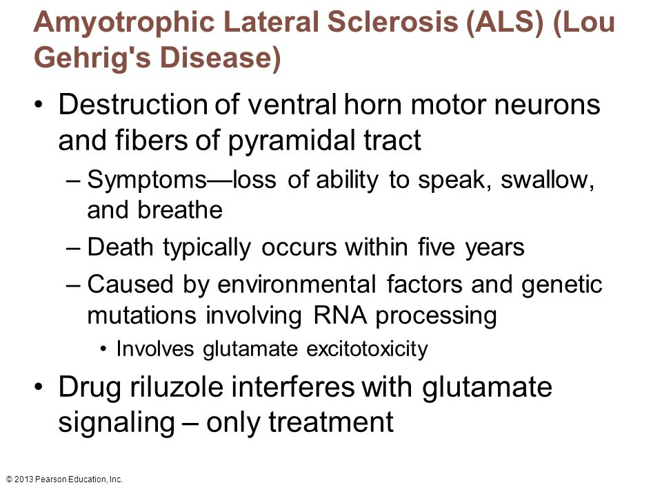 Amyotrophic Lateral Sclerosis (ALS) Fact Sheet
