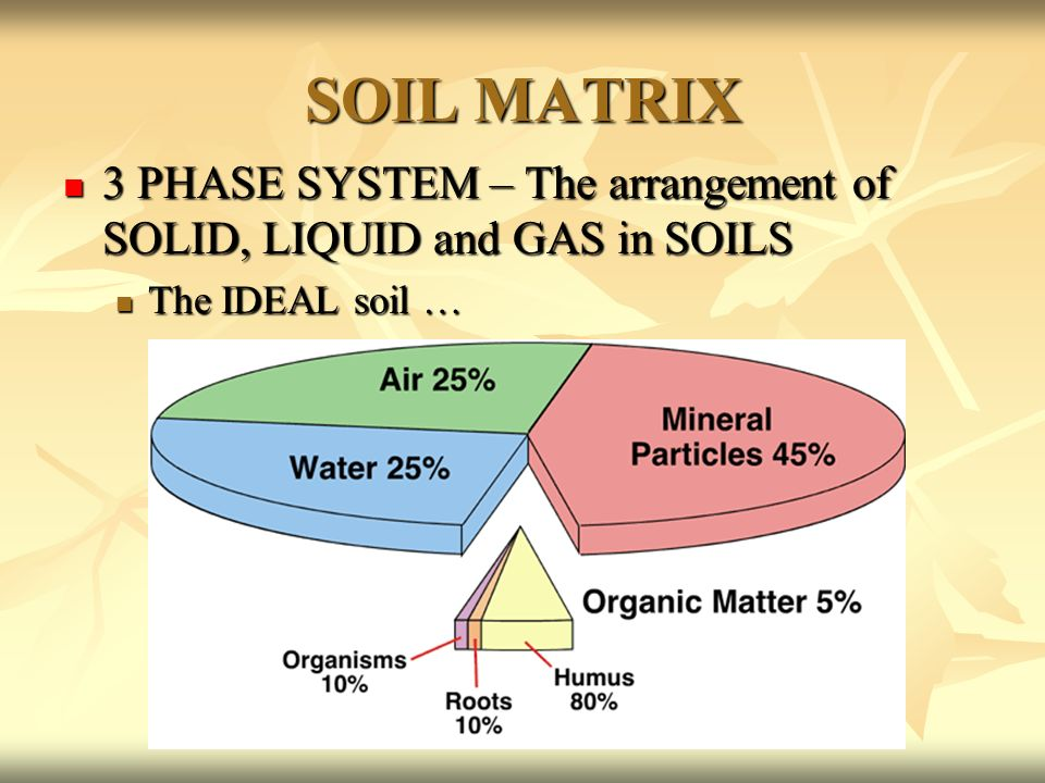 The big picture our biosphere ppt download for Soil 3 phase system