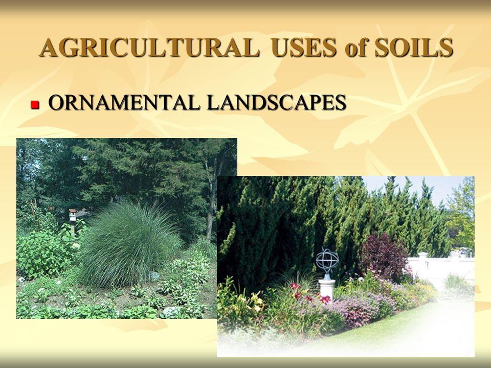The big picture our biosphere ppt download for Soil and its uses