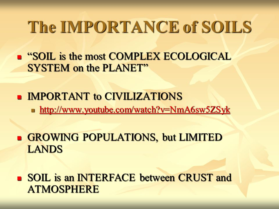 The big picture our biosphere ppt download for Importance of soil minerals