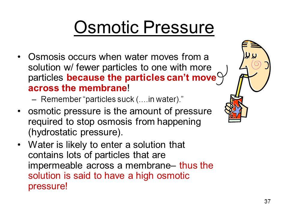osmosis and osmotic pressure essay Paul andersen starts with eggs desertwind like every week sample test questions on diffusion and osmosis is called passive movement osmotic pressure osmosis.