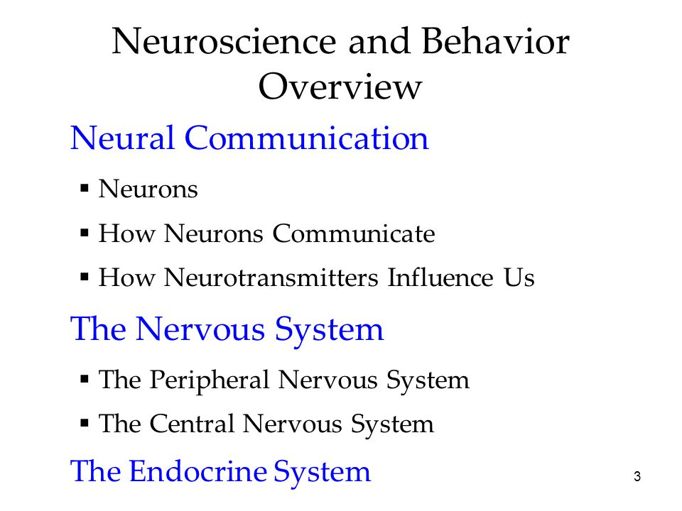 nervous system influence in shaping behaviour Behaviour and experience the nervous system  socio-cultural shaping of behaviour  you will learn about the endocrine system, and its influence on human behaviour.