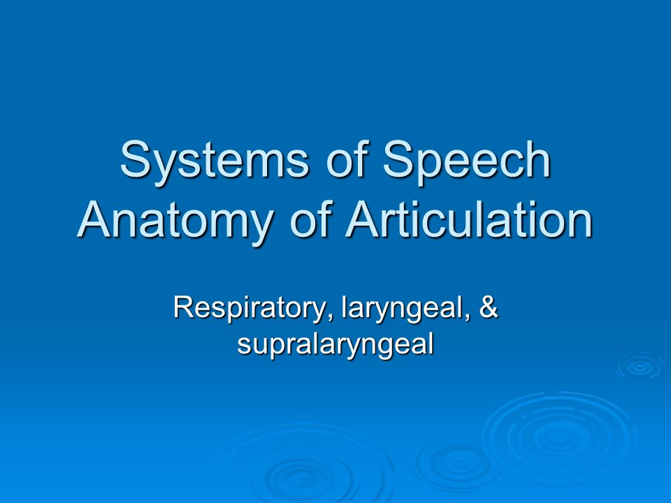 Systems of Speech Anatomy of Articulation - ppt video online download