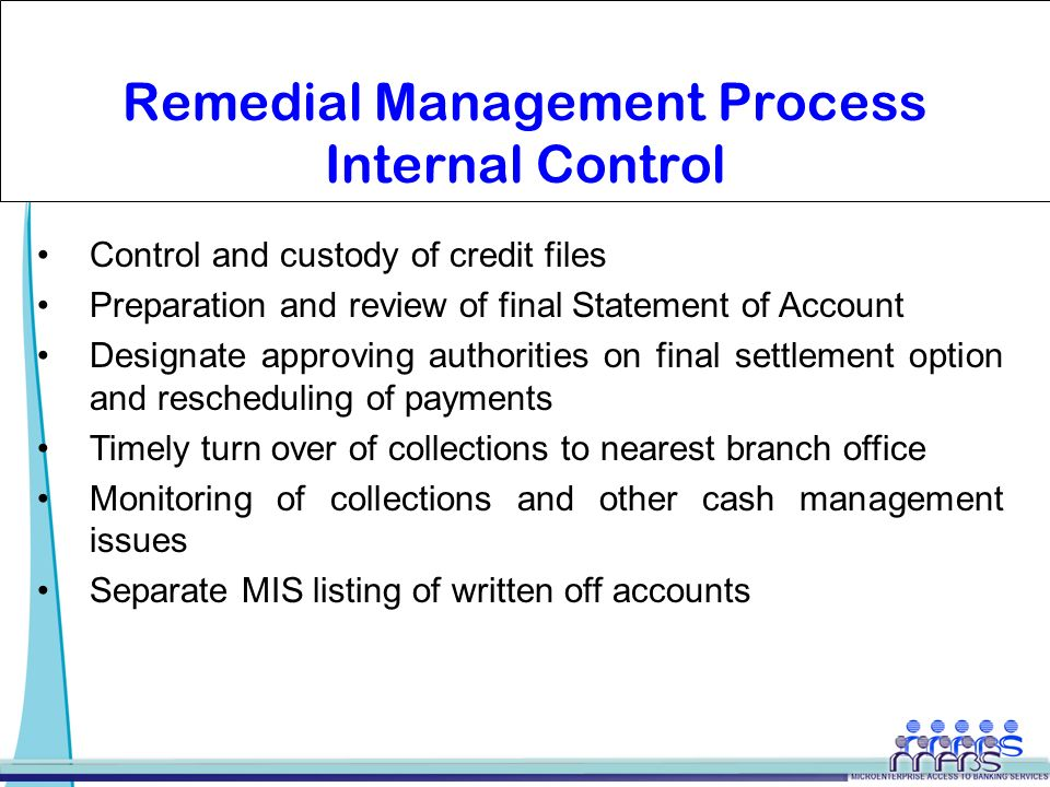 internal control and cash management pdf