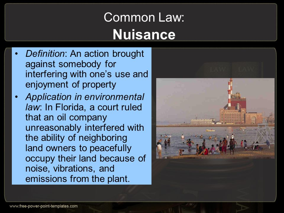 Common Law Definition