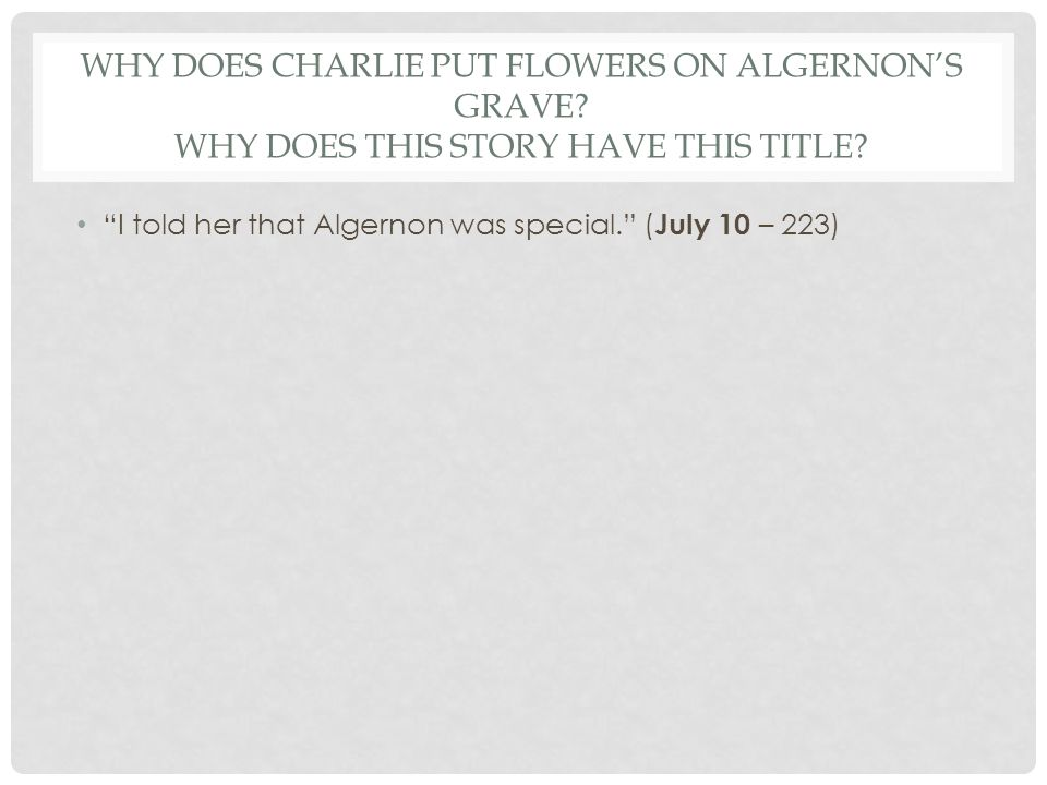 Why Does Charlie Put Flowers On Algernons Grave