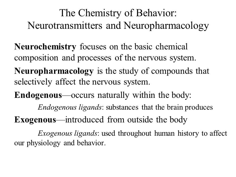 A Look Into the Major Neurotransmitters of the Nervous System