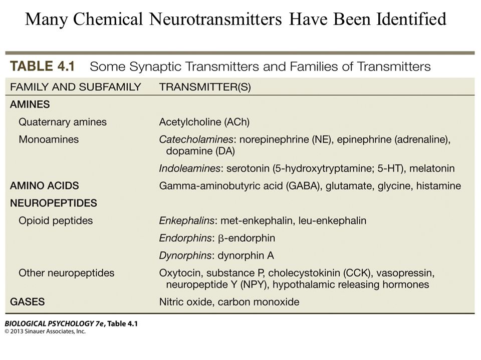 neurotransmitters and neuropharmacology The chemistry of behavior: neurotransmitters and neuropharmacology follow us on facebook and twitter , or subscribe to our mailing list, to receive news updates learn more.