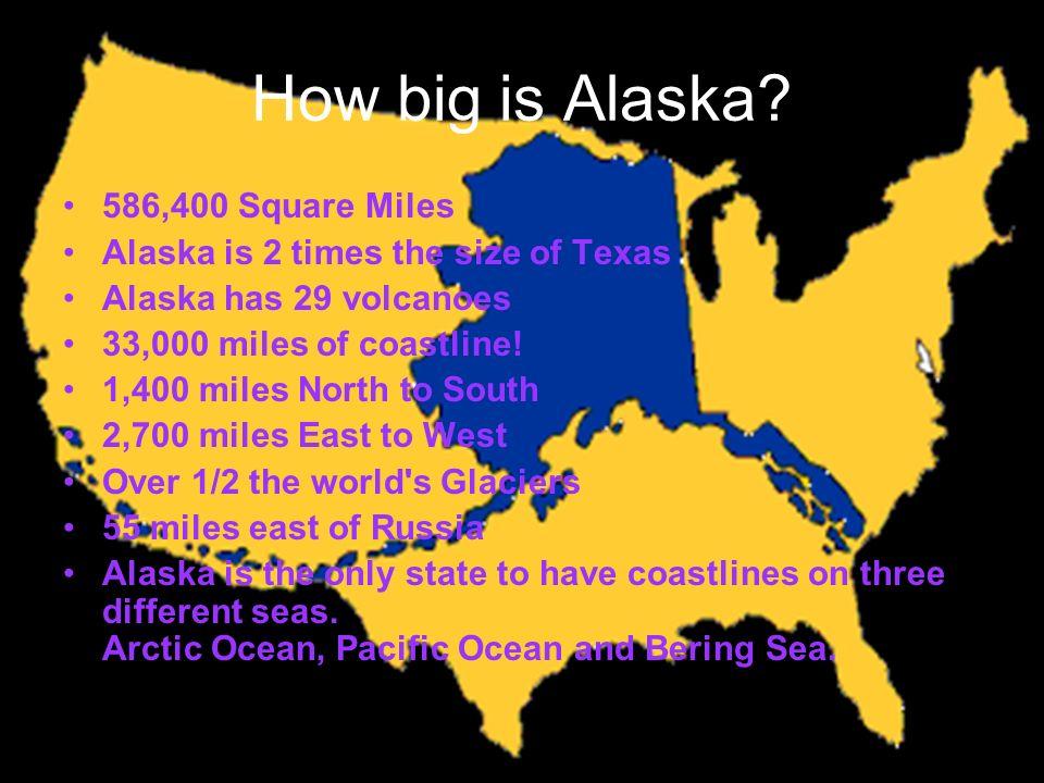 Alaska By Emily Schwab 4th hour ppt video online download