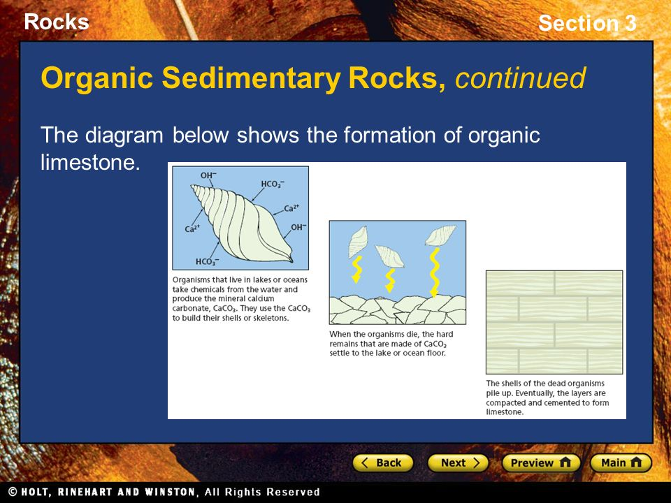 Section 3: Sedimentary Rock - ppt download