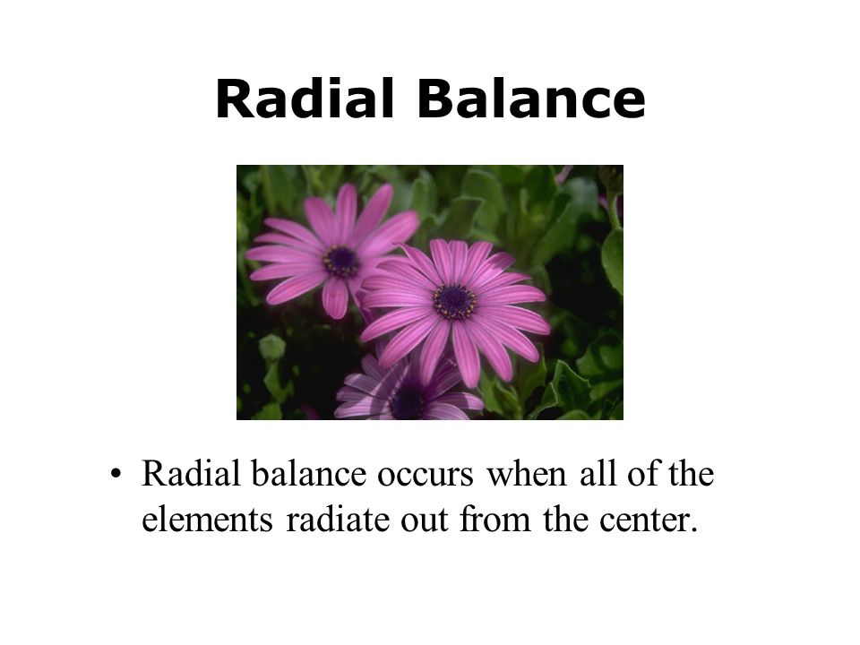 Radial Balance Radial balance occurs when all of the elements radiate out from the center.