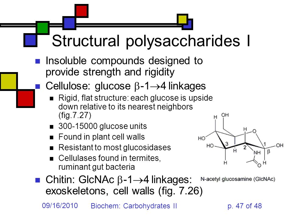structural polysaccharides 26 j pacd (2009) 11: 26−44 structural polysaccharides in xoconostle (opuntia matudae) fruits with different ripening stages rosario álvarez armenta and cecilia beatriz peña-valdivia.