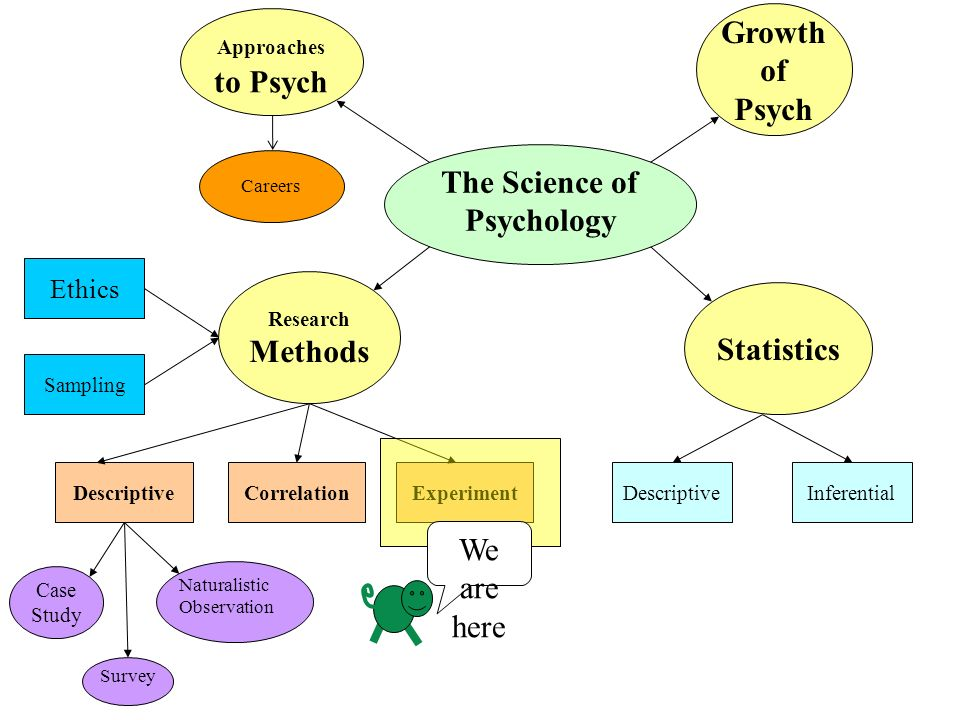 the qualitative or quantitative processes psychology essay Compare and contrast qualitative and quantitative research 1 compare and contrast qualitative and quantitative the pragmatic processes of studying the.