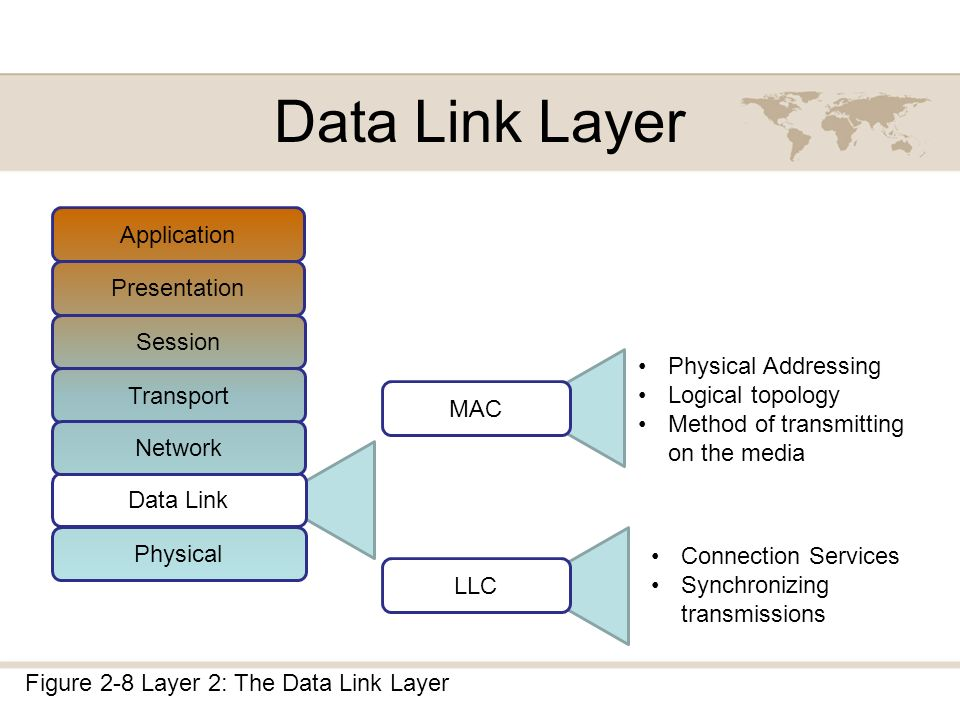 chapter 2 dissecting the osi model