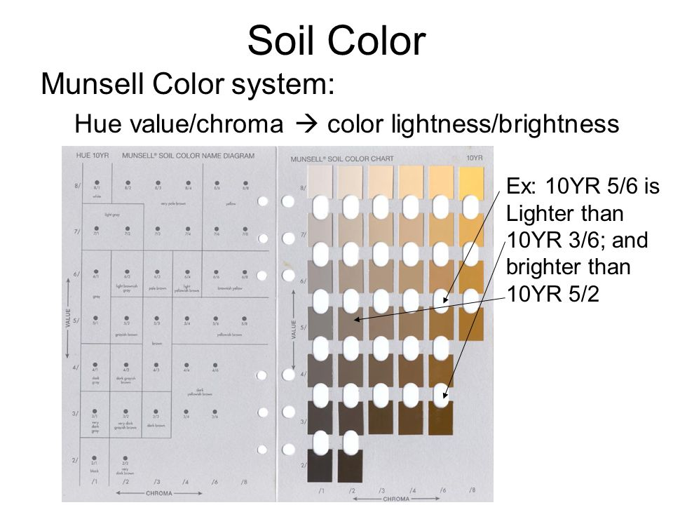 2 soil color munsell
