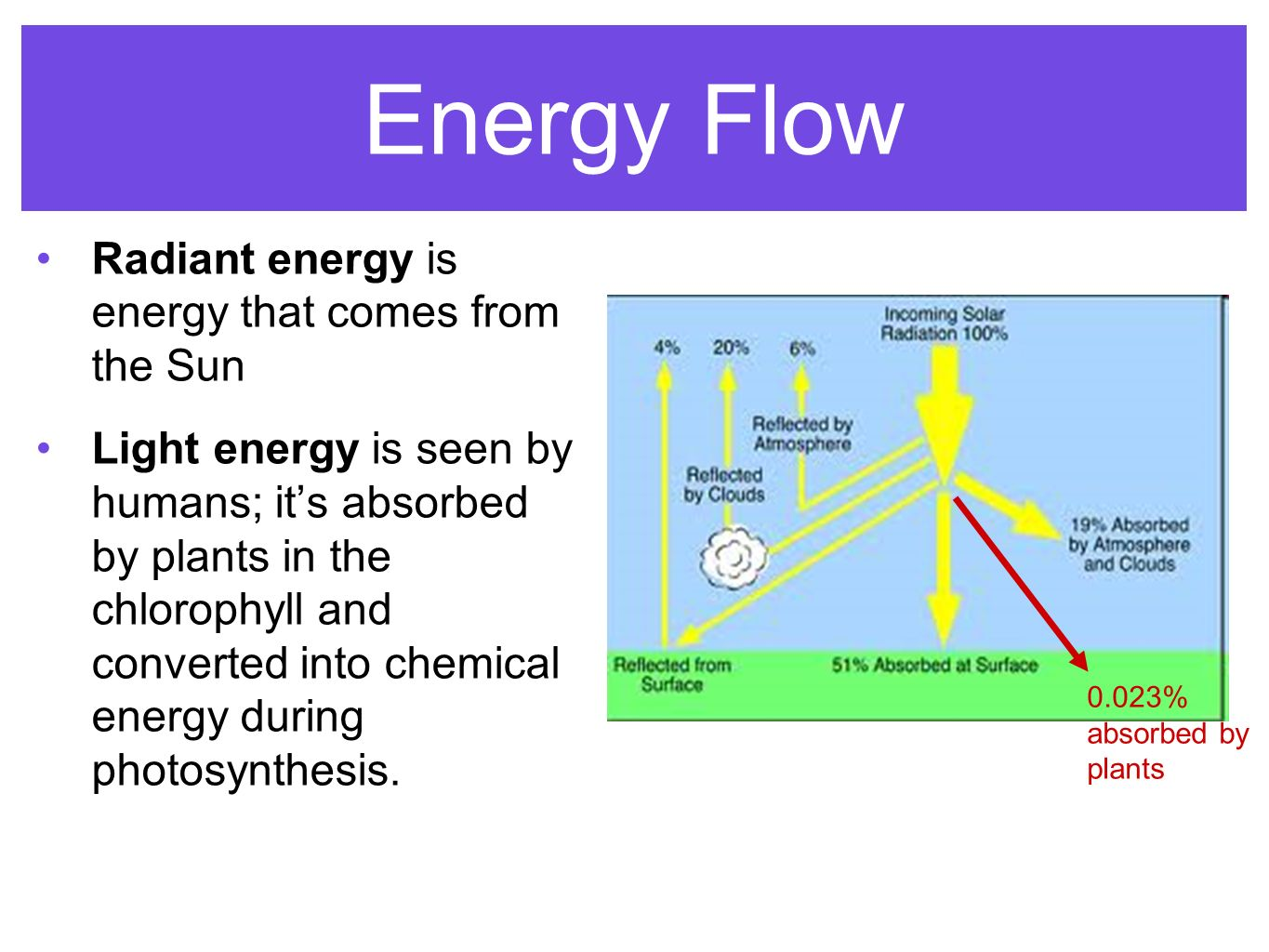 Energy flow photosynthesis cellular respiration ppt video 2 energy pooptronica Choice Image