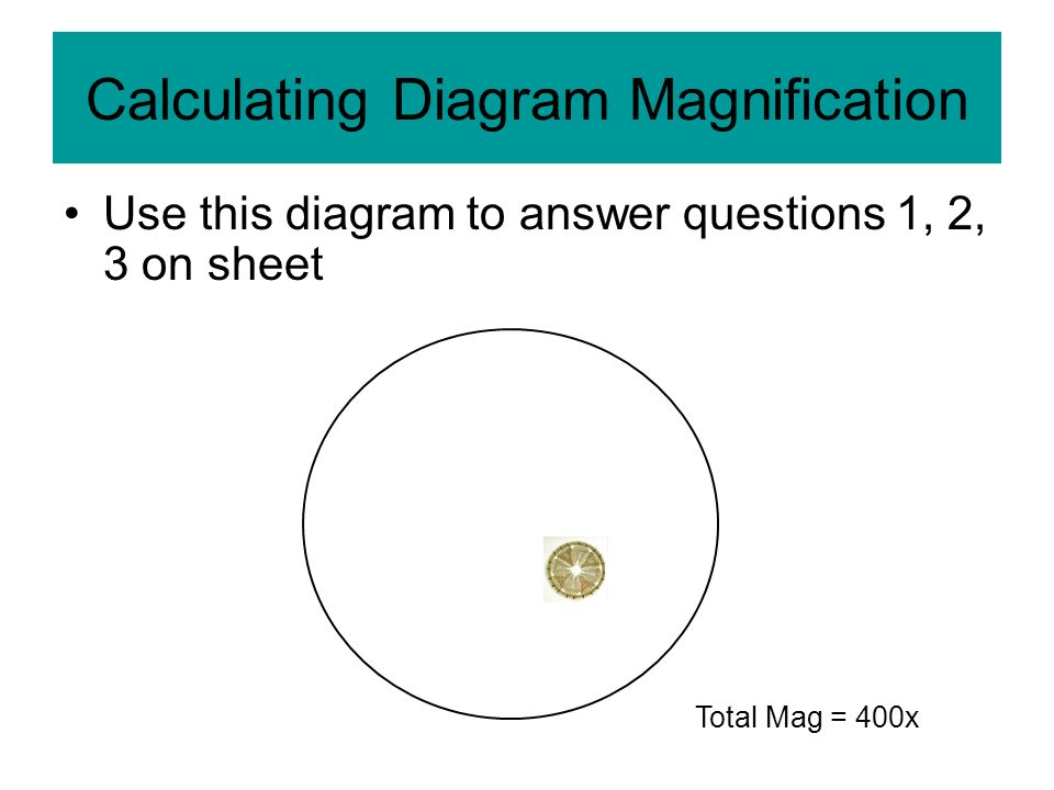 Calculating Diagram Magnification