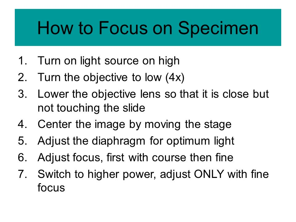 How to Focus on Specimen