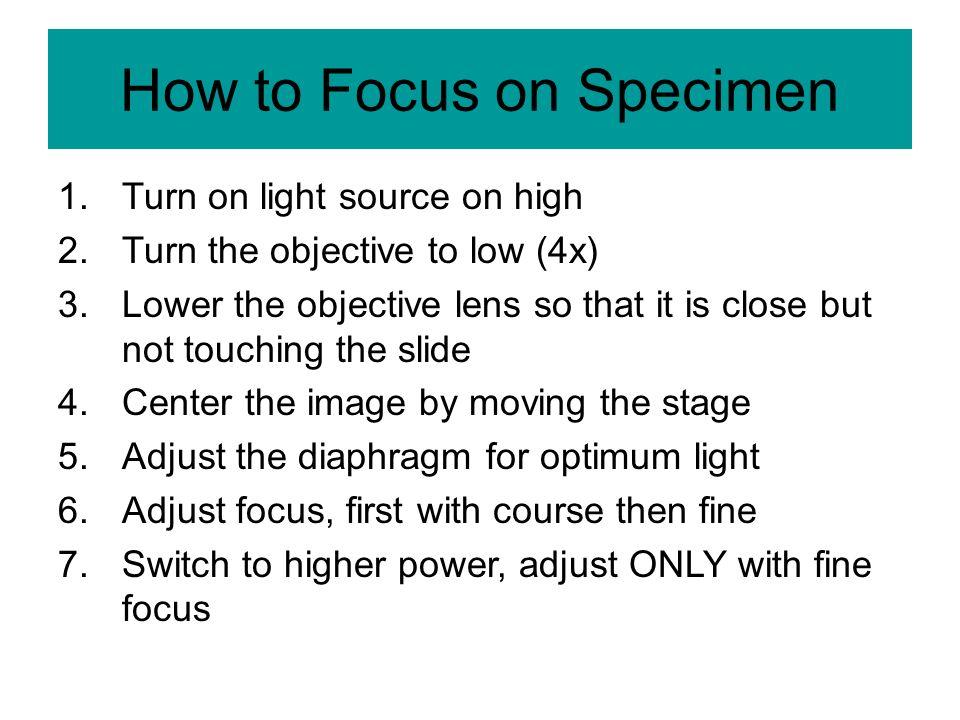 How to Focus on Specimen