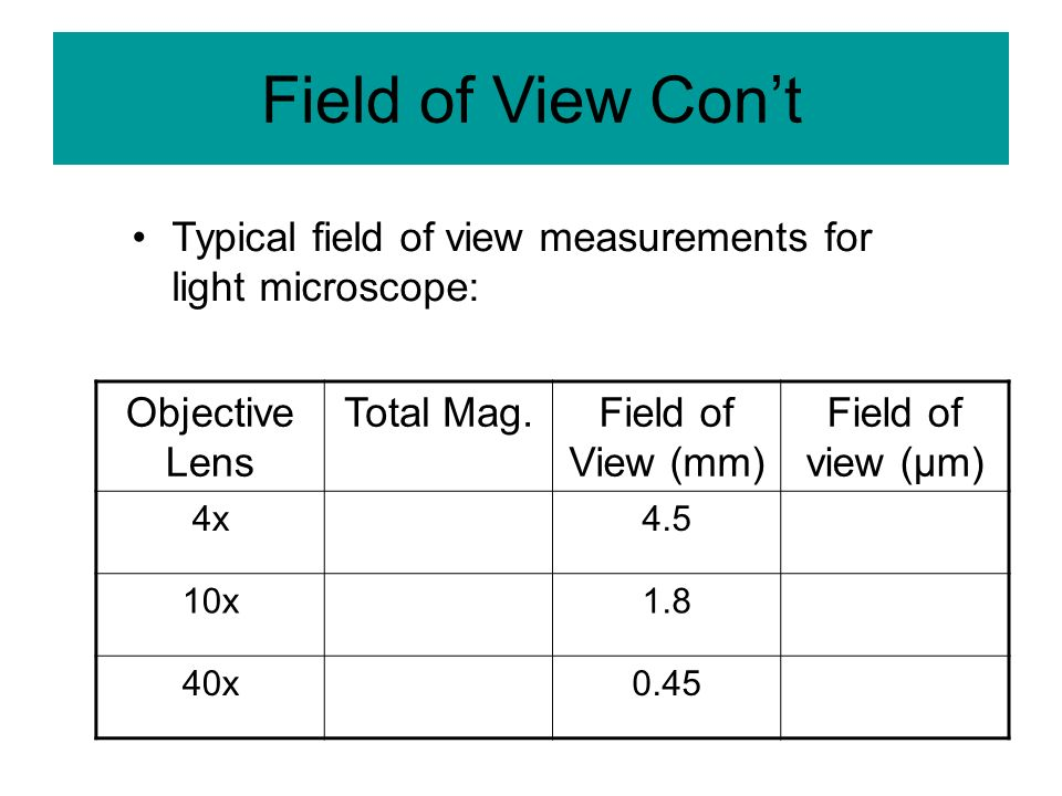 Field of View Con't Typical field of view measurements for light microscope: Objective Lens. Total Mag.