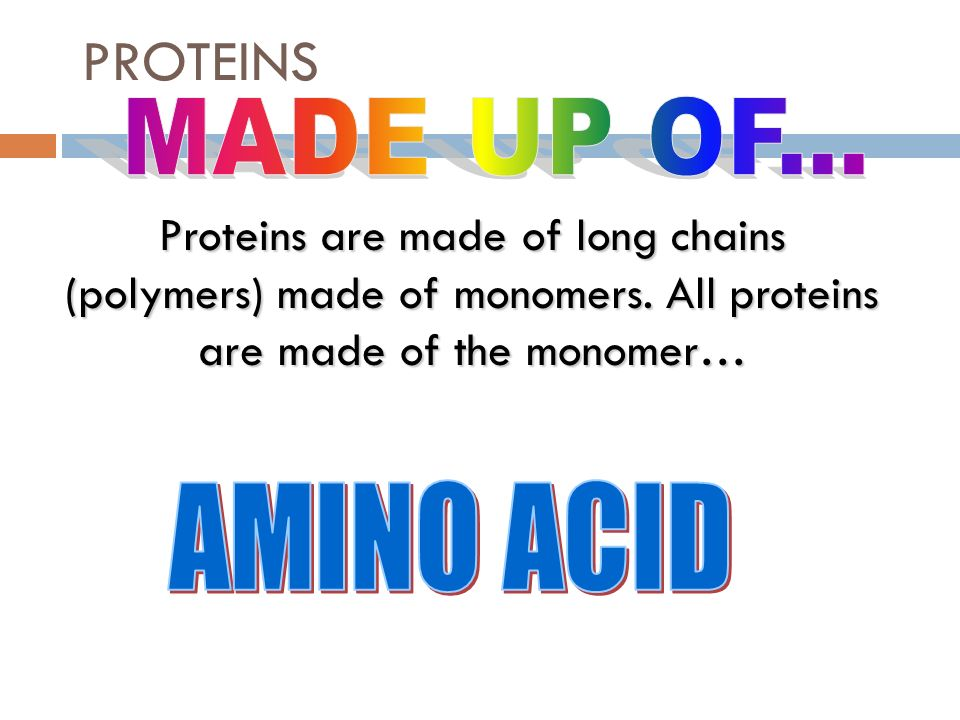 Proteins Key Concept: Proteins are essential to the ...