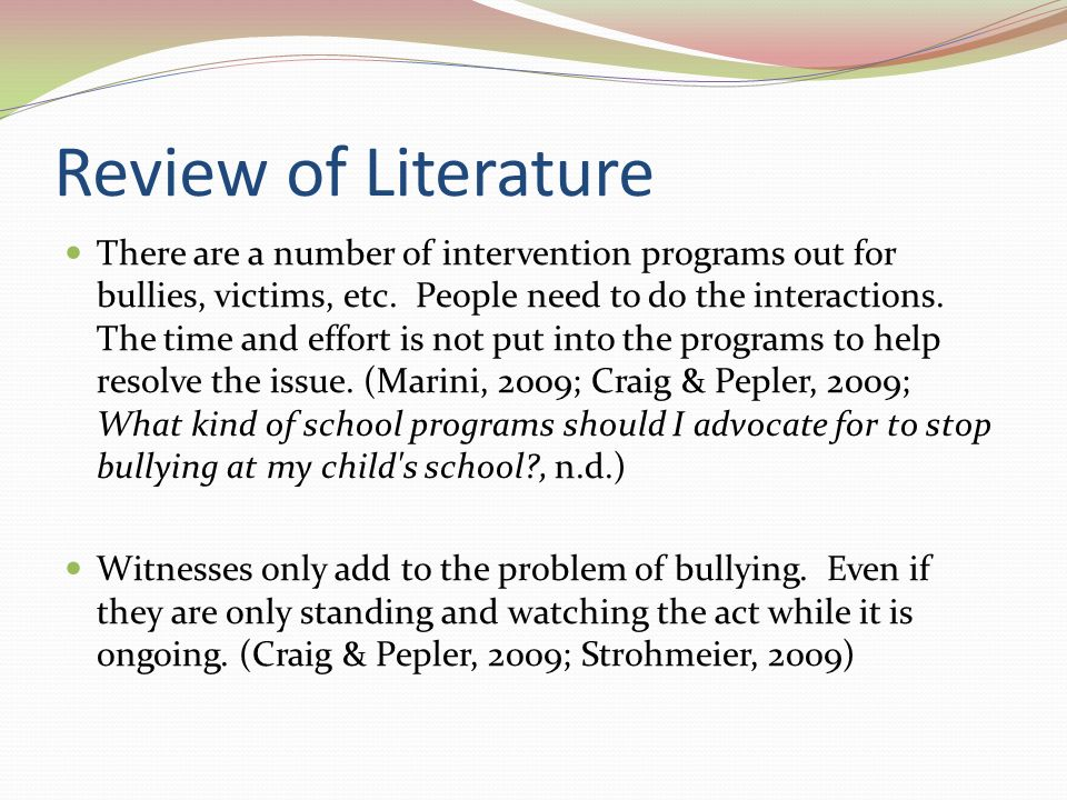literature review school bullying
