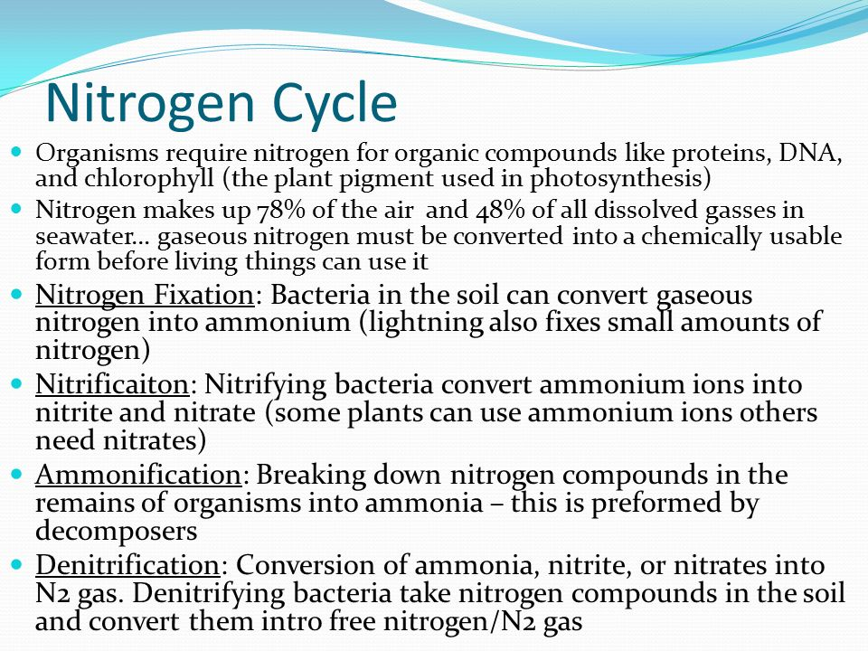 Nitrogen Cycle Organisms require nitrogen for organic compounds like proteins, DNA, and chlorophyll (the plant pigment used in photosynthesis)