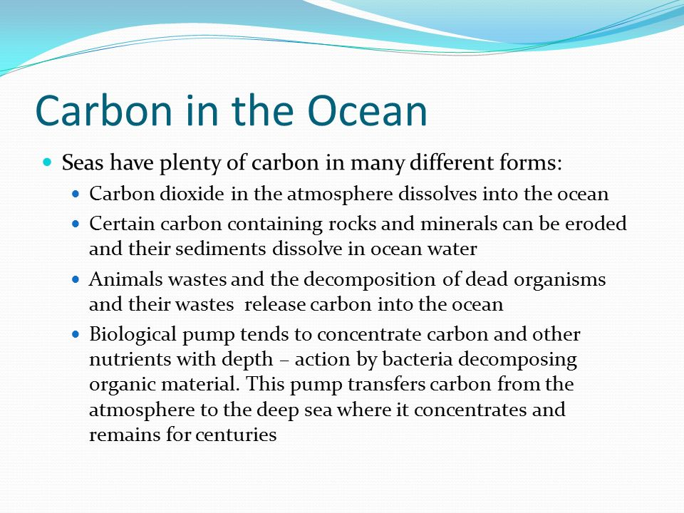 Carbon in the Ocean Seas have plenty of carbon in many different forms: Carbon dioxide in the atmosphere dissolves into the ocean.