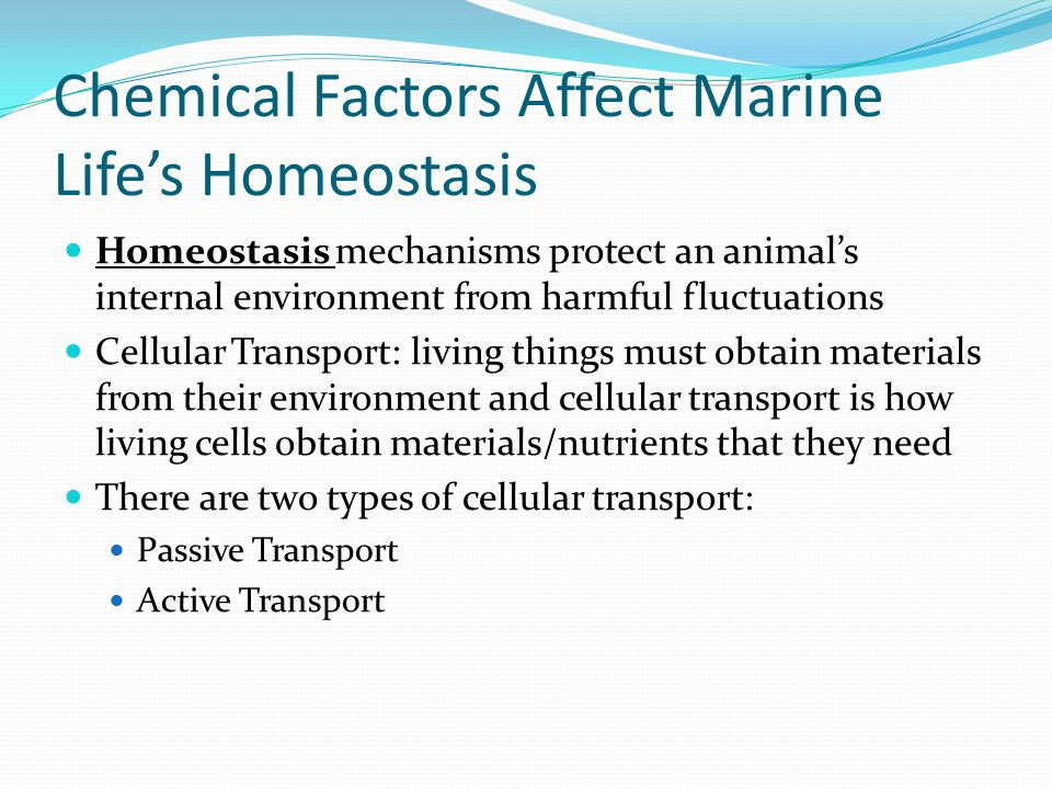 Chemical Factors Affect Marine Life's Homeostasis